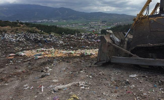 Boyanarak satılmaya çalışılan 1 ton bozuk yer fıstığı imha edildi
