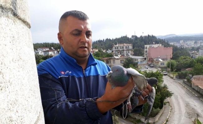 Mahsur kalan güvercini itfaiye kurtardı