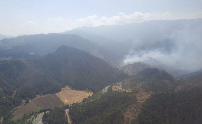 Kahramanmaraş'ta orman yangını: 2 hektarlık alan zarar gördü