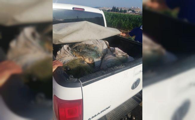 Kaçak balık avlayan iki kişi yakalandı: Bin 635 lira para cezası yazıldı