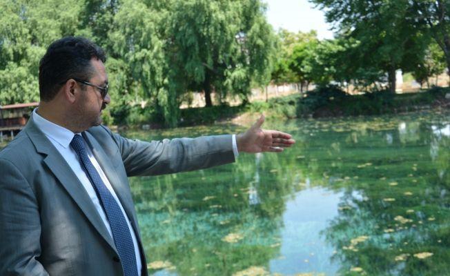 Başkan Gürbüz, Pınarbaşı'nda yapılan çalışmaları yerinde inceledi