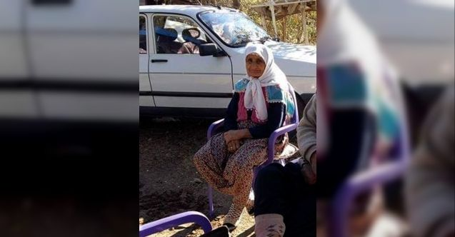 Meyve toplamak için çıktığı ağaçtan düşen yaşlı kadın öldü