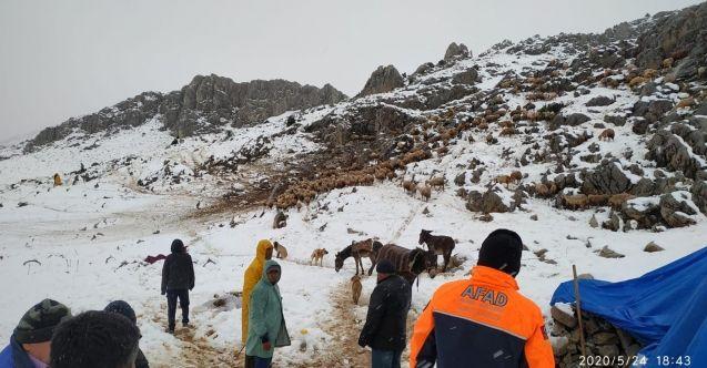 Nurhak'ta mahsur kalan yaylacıların ardından çoban ve koyunlarda kurtarıldı