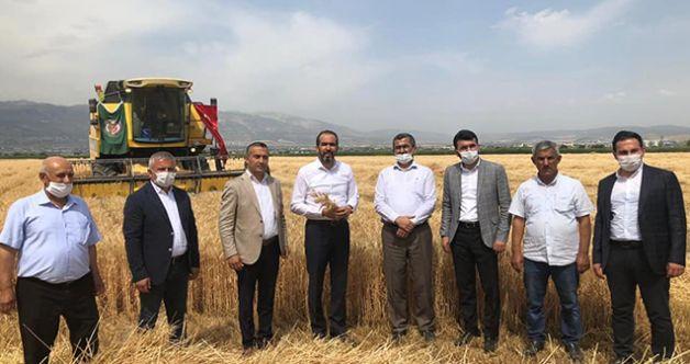 Kahramanmaraş'ta arpa ve buğday hasadı çiftçinin yüzünü güldürdü!