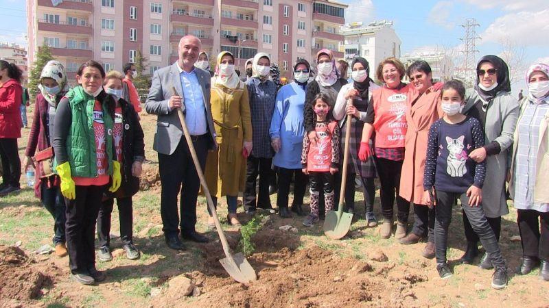 Elbistan'da 'toprak dede' Hayrettin Karaca adına fidan dikildi