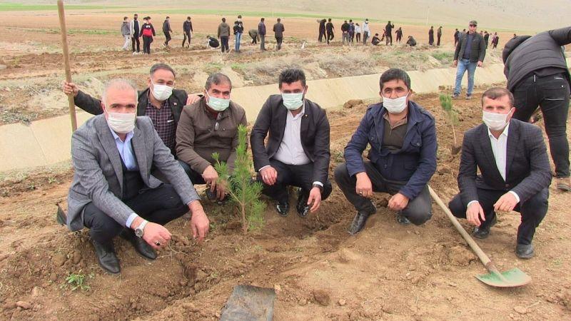 Elbistan OSB'de koruma bandı ağaçlandırıldı