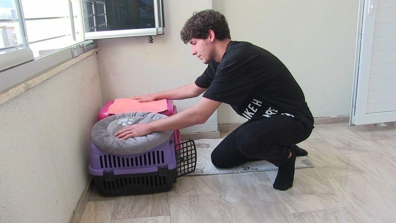 Elbistanlı genç, kedisinin ölümünden dolayı veterinerlerden şikayetçi olacak
