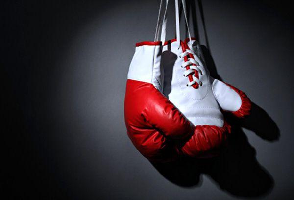 Kick bokscular gala müsabakasına gidiyor