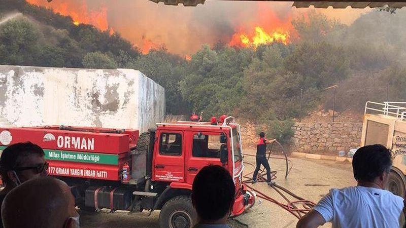 Orman Bakanı Pakdemirli, Hangi İllerdeki Yangınların Kontrol Altına Alındığını Açıkladı
