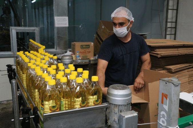 Ordu'dan 7 ülkeye aspir yağı ihracatı