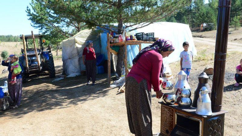 Orman işçileri evlerinden kilometrelerce uzakta ekmeğini kazanıyor