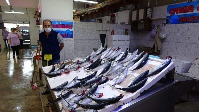Karadeniz'de son 15 yılda palamut avı yüzde 50 azaldı