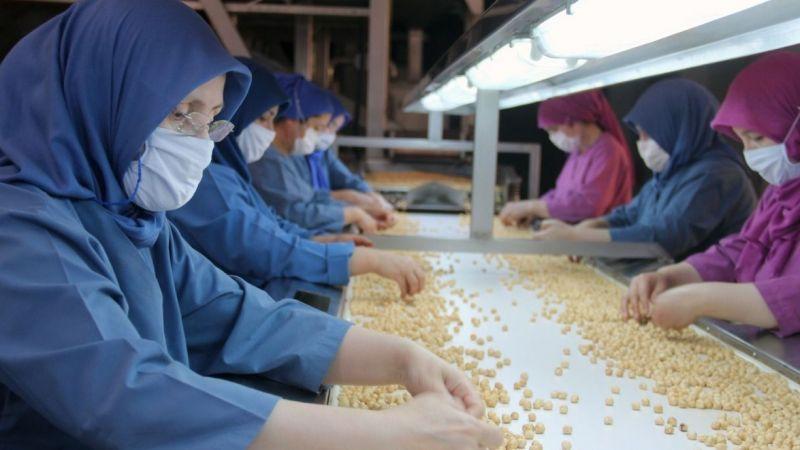 Ticaret borsalarında 495,6 bin ton fındık işlem gördü