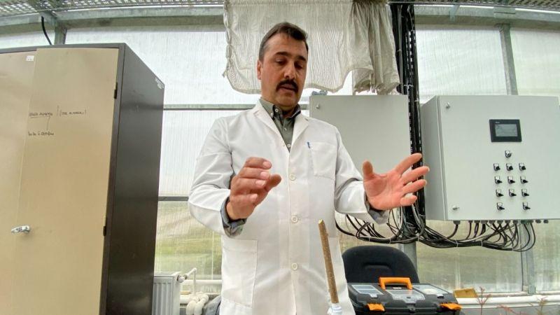1 dekarda 600 kilo fındık üretilebilecek