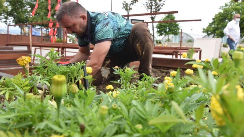 Giresun'da Park ve Bahçeler çiçeklerle donatılıyor
