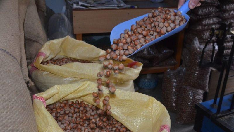 Serbest piyasada fındık fiyatı haftaya 24,50 liradan başladı