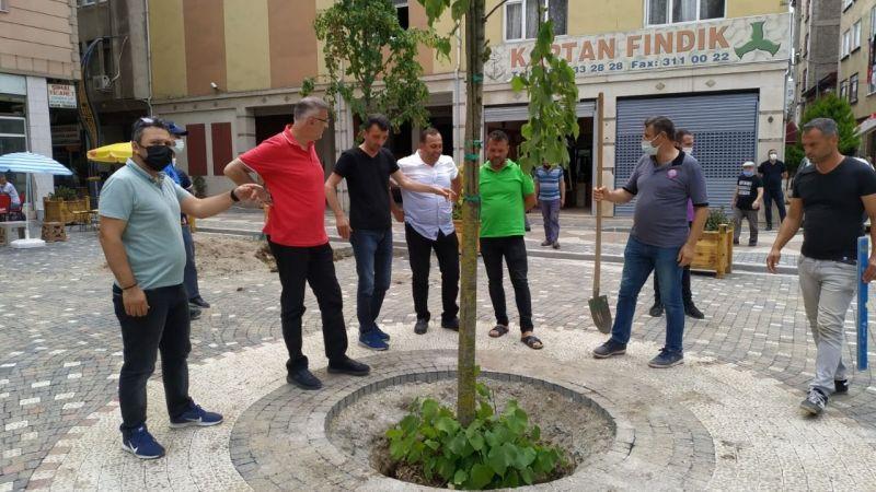 Bulancak'ta Hacı Hafız Kurdoğlu Meydanı Yenileniyor