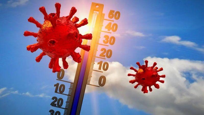 Havalar ısınınca koronavirüs etkisini kaybedecek mi?