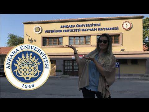 Ankara Üniversitesi Akademik kadrosu için farklı fakültelerde 87 yeni pozisyon açıldı!