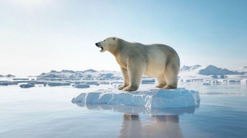 Bir günde rekor miktarda buzul eridi