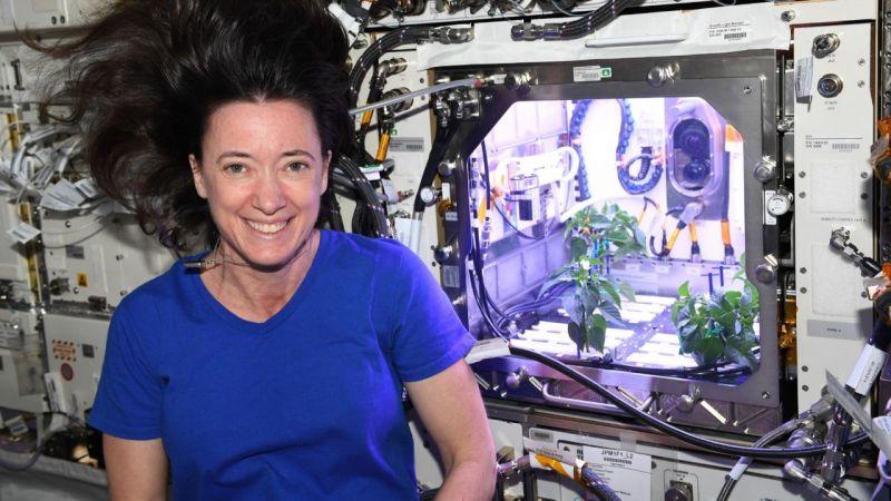 NASA, uzayda biber yetiştirdi