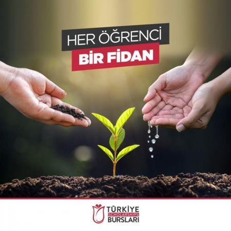 YTB Türkiye Bursları'ndan orman yangınlarında etkilenen bölgelere fidan bağışı