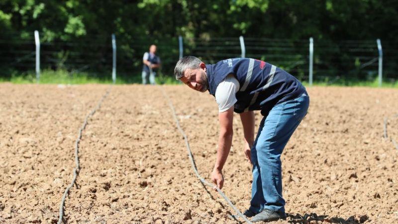İzmit Belediyesi sebze bahçesi fide ekimine hazırlandı