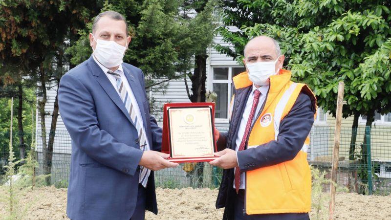 İlimtepe'ye 750 sedir ağacı