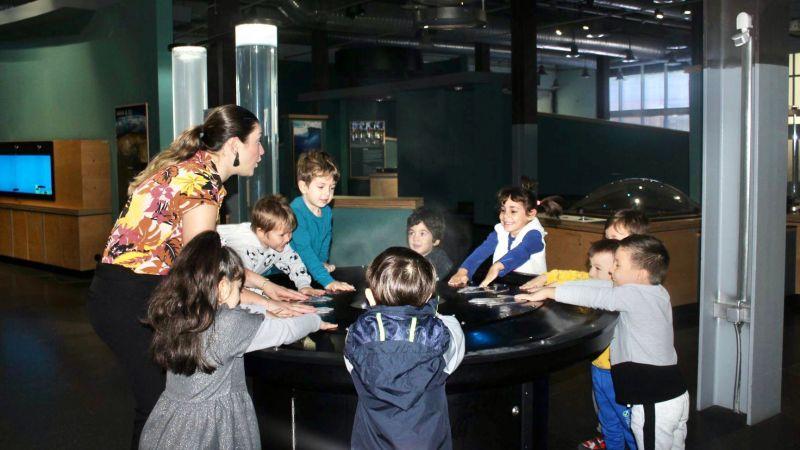 Bilgi Köprüsü Montessori yaz okuluna hazır