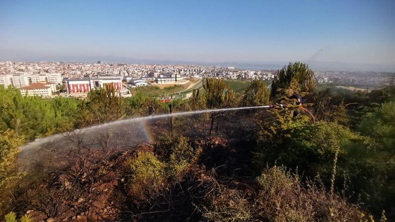 Gebze'de mesire alanında çıkan yangında çam fidanları zarar gördü