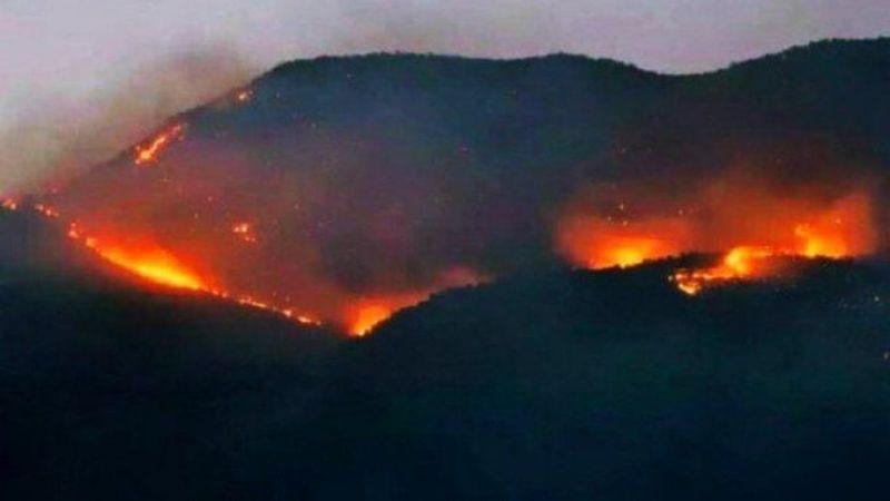 Kocaeli dahil 74 barodan Tunceli'deki orman yangını için ortak açıklama