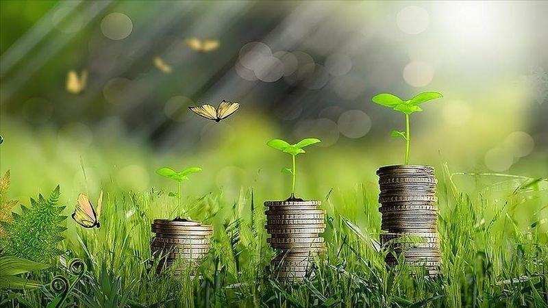 Yeşil dönüşüm projesi olan genç girişimcilere 200 bin liralık hibe desteği verilecek