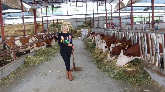 Spikerliği Bıraktı, Besi Çiftliği Kurup Süt Üretimine Başladı
