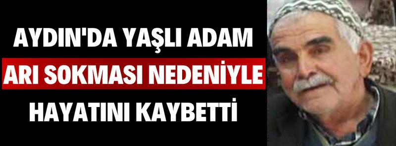 Aydın'da Yaşlı Adam Arı Sokması Nedeniyle Hayatını Kaybetti