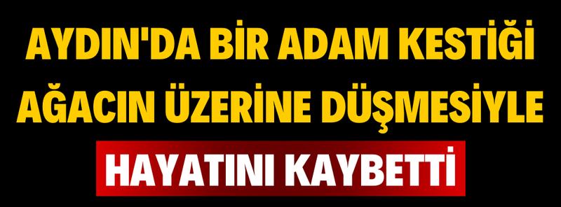 Aydın'da Feci Ölüm; Kestiği Ağacın Altında Kalan Adam Hayatını Kaybetti