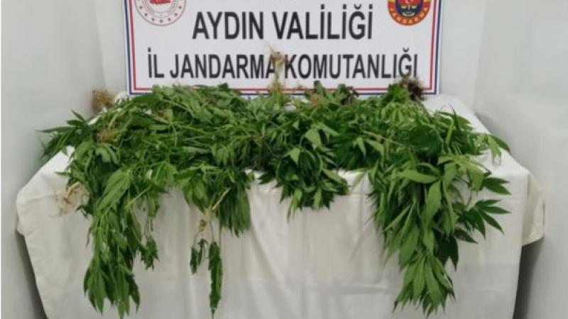Aydın'da Uyuşturucuya Sıfır Tolerans!