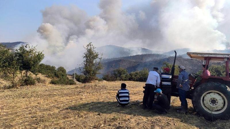 Bozdoğan'da Çıkan Orman Yangını, Muğla'ya Sıçradı