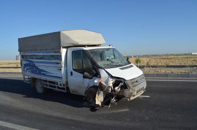 Otomobil Koyun Sürüsüne Daldı; Çoban Öldü, 2 Kişi Yaralandı