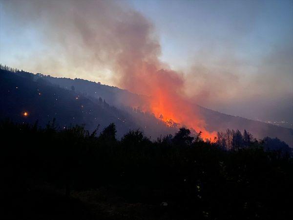 Aydın'daki Yangınlarla İlgili Son Durum