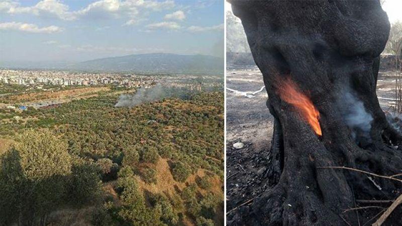 Tadilatta Ağaçlık Yangınına Neden Olan Ev Sahibi Serbest Bırakıldı