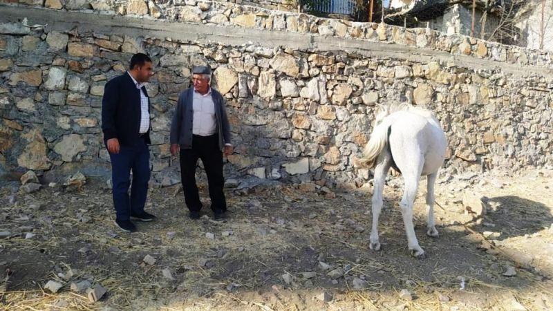 Çiftçiye Saldıran Kurt Kuduz Çıktı, İlçede 6 Aylık Karantina Uygulanacak