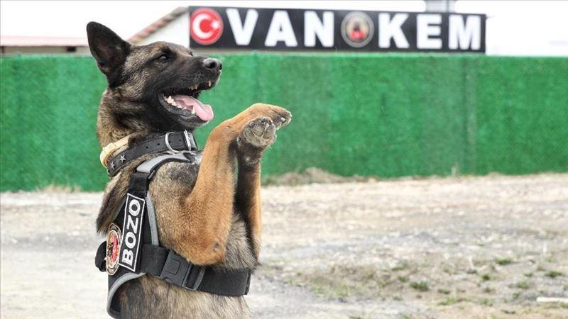 Araçtaki 101 Kilo Eroini Narkotik Köpeği 'Magnum' Buldu