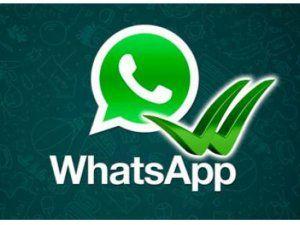 Whatsapp Türkiye'de Lider