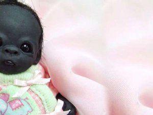 Dünyanın En Siyah Bebeği: Oyuncak Goril Yavrusu Çıktı