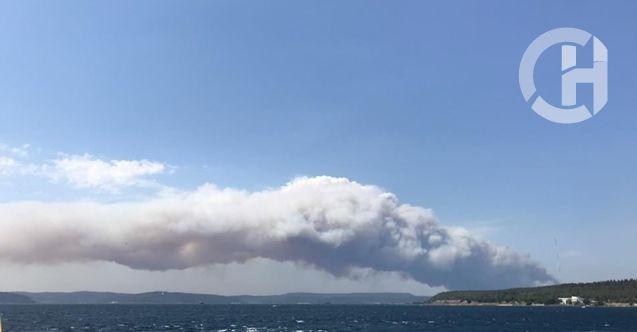 Gelibolu Yarımadası'nda Orman Yangını: Söndürme Çalışmaları Devam Ediyor