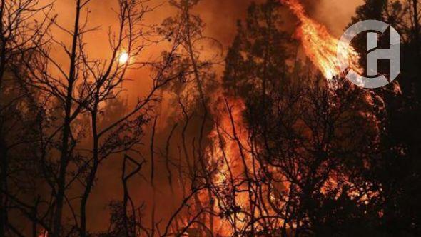 California yanıyor! 100 bin kişi tahliye edilecek
