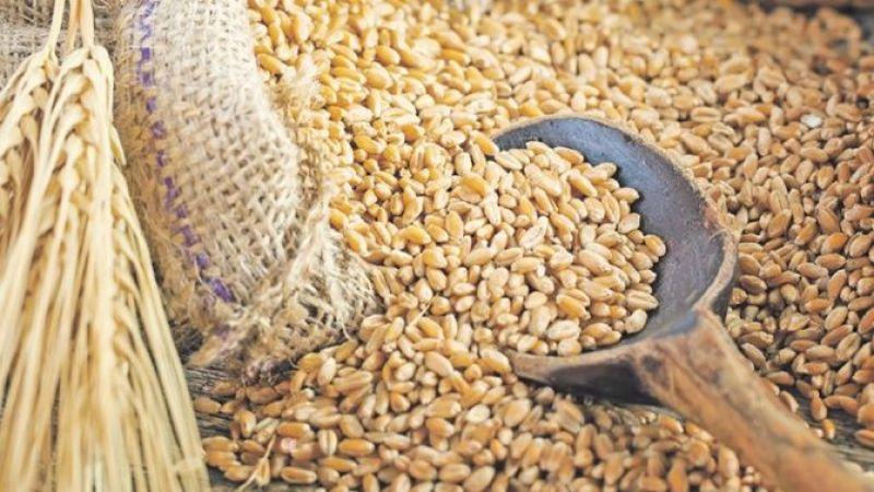 Buğday, arpa ve mısır ithalatında yeni gümrük vergisi kararı