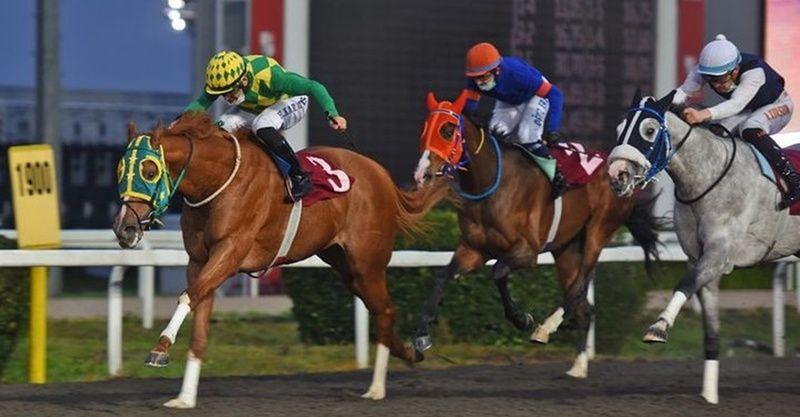 27 Ocak 2021 Çarşamba Bursa at yarışı sonuçları! 27 Ocak Çarşamba yarış sonuçları