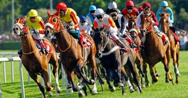 28 Ocak 2021 İzmir at yarışı tahminleri! 28 Ocak Perşembe İzmir altılısı tahminleri