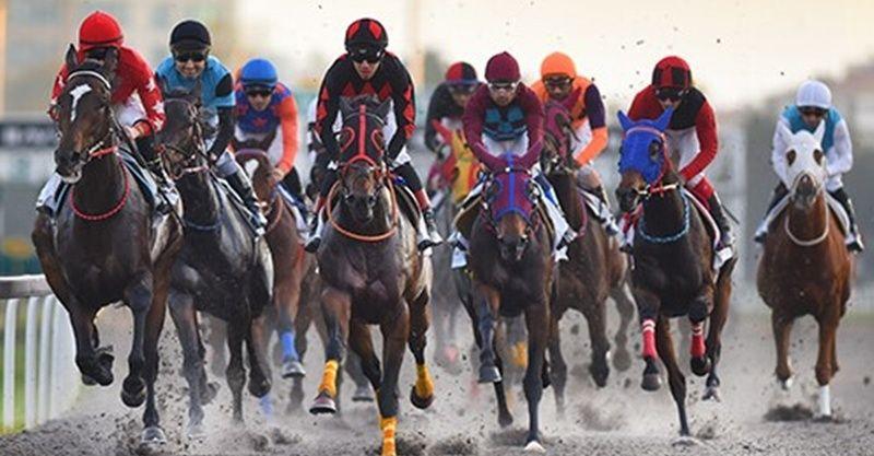 31 Ocak Pazar Adana at yarışı tahminleri! 31 Ocak Adana altılısı banko tahminler